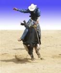 Cowboy - 204_240 - shutterstock_6674458