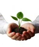Nachhaltig1-127x150 in Europas Markt für nachhaltige Fonds wächst