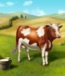 Aquila1-127x150 in Rendite mit glücklichen Kühen in Neuseeland
