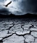 Desert-127x150 in Liquiditätsmangel: Axa Immoselect bleibt zu