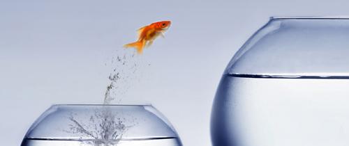 Herausforderung-Sprung-Fisch in Investmentfonds: Verwaltete Mittel erreichen Rekordstand