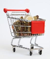 """Einkaufen-Wagen-Expansion in """"Die Euro-Krise verdirbt den Deutschen die Kauflust"""""""
