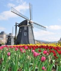 LTO3 Erfolg in den Niederlanden