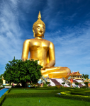 Buddha-Thai-online-127x150 in High Yield aus Fernost mit Währungsschutz