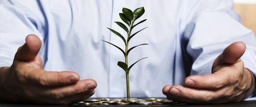 Beratung Nachhaltigkeit Gruen Geld