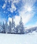 Schneelandschaft-Sonne-Dunst-127x150 in Immobilienklima trübt sich im Dezember ein