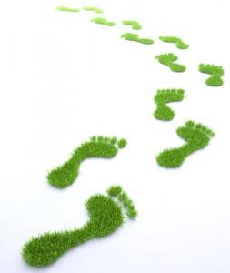 Nachhaltigkeit-253x300 in Versiko bringt nachhaltige Fondsrente