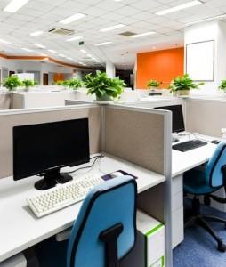 Bu Rofla Chen1-254x300 in Büromärkte: Spitzenmieten leicht gestiegen