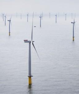 Offshore Windpark-255x300 in Windpark-Eröffnung: 175 Windmühlen drehen sich auf hoher See