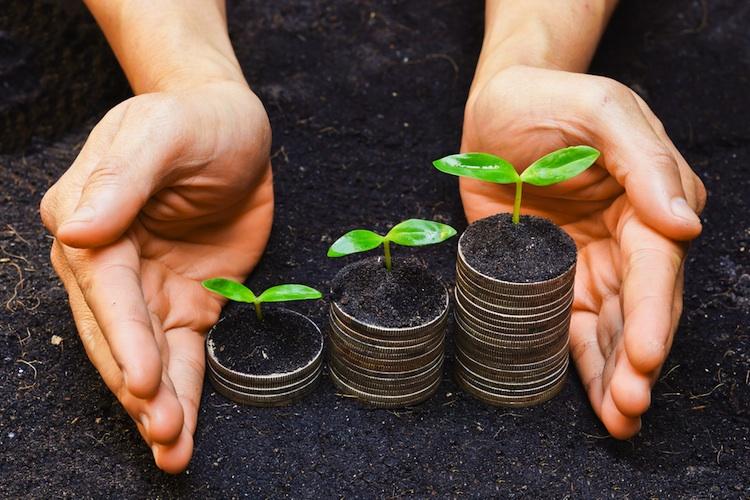 Nachhaltige-Geldanlage-Beratung in Dilemma zwischen Wachstum und Nachhaltigkeit
