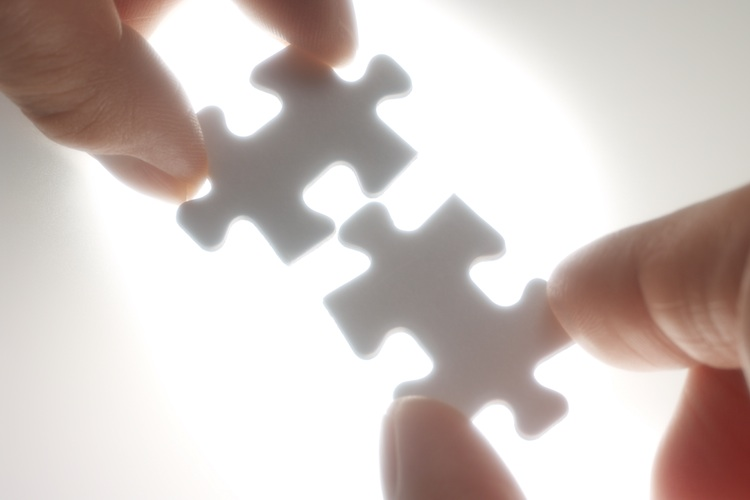 Kooperation in Alceda und Lingohr & Partner arbeiten zusammen