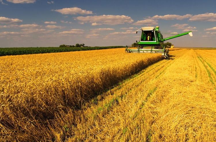 Shutterstock 148705532 in Rabo Farm startet weiteren Agrarfonds