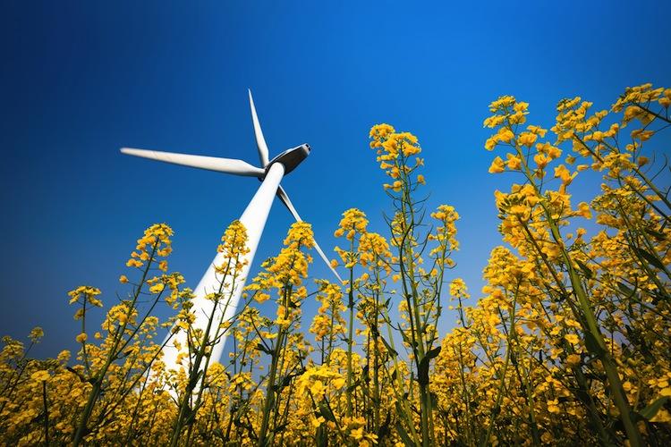 Shutterstock 125221256 in Leonidas kündigt nach Vollplatzierung neue Windfonds an
