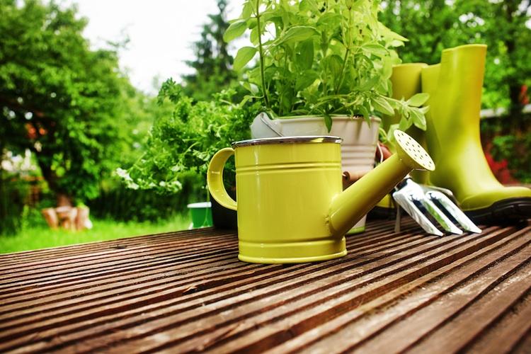 Garten Shutterstock 181851116 Original-Kopie in Studie: Immobilienkäufer bevorzugen Stadtrand