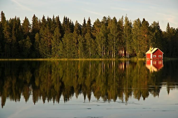 Shutterstock 134297636 in Aquila: Spezialfonds kauft finnische Wälder