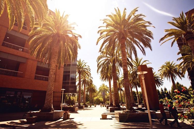 Shutterstock 136478561 in Wealthcap investiert im Silicon Valley