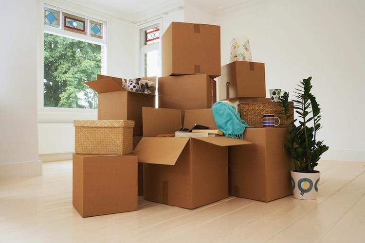 Umzug-Kopie1 in Wohnungskündigungen 2014 mehrheitlich aus privaten Gründen