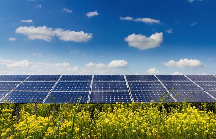 Shutterstock 1786941412 in Solarenergie: Neue Vermögensanlage von Wattner