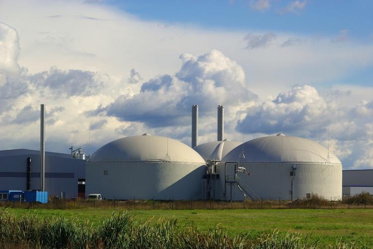 Biomasse in Neckermann Neue Energien bringt Beteiligung an Biomassekraftwerk