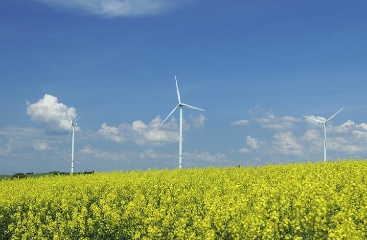Shutterstock 16130989 in Leonidas: Neue Windkraftbeteiligungen vor Platzierungsstart