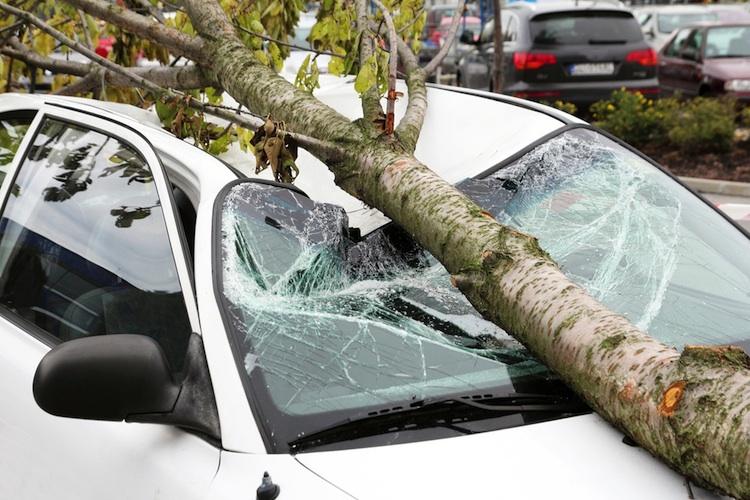 Sturm Unwetter Schaeden in Sturmtief Kim holt aus - was zahlt die Versicherung?