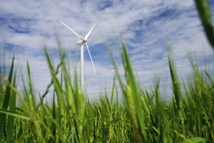 Shutterstock 283078418 in Ausbau der Windenergie: Rückgang auf hohem Niveau