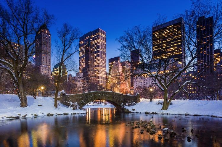 Shutterstock 176661923 in Immobilienstudie: Höhere Renditeerwartungen in den USA