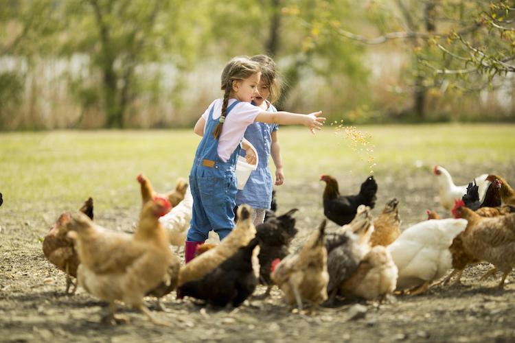 Shutterstock 186697520 in Attraktives Landleben: Bewohner wollen nicht umziehen