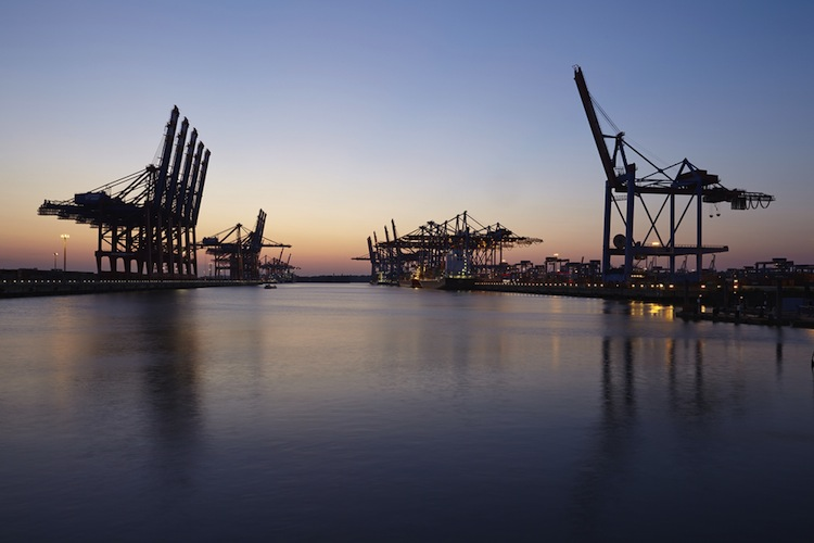 Shutterstock 309259391 in HHLA büßt beim Containerumschlag deutlich ein