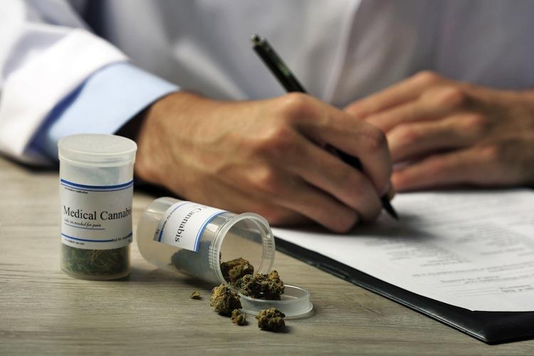 Shutterstock 313419206 in Krankenkassen wehren sich gegen Kosten von Cannabis auf Rezept