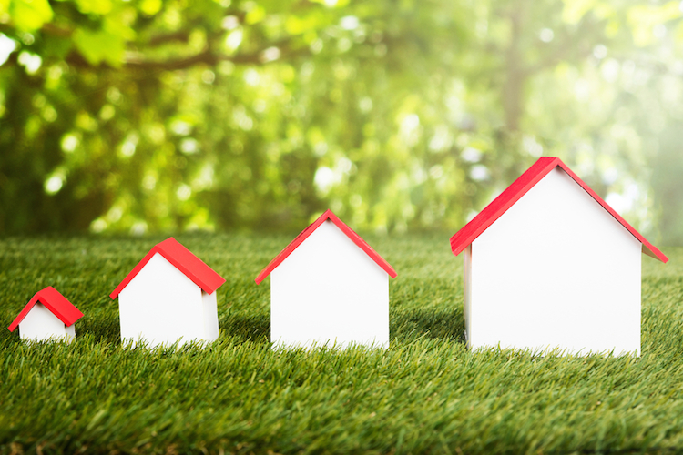 Haus-klein-gro -wachsen-mini-wiese-natur-shutterstock 561890191 in Wohnimmobilienpreise setzen Aufwärtstrend fort