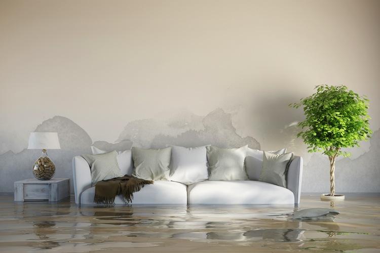 Shutterstock 221766814 in Überschwemmungen: Versicherungsdichte steigt