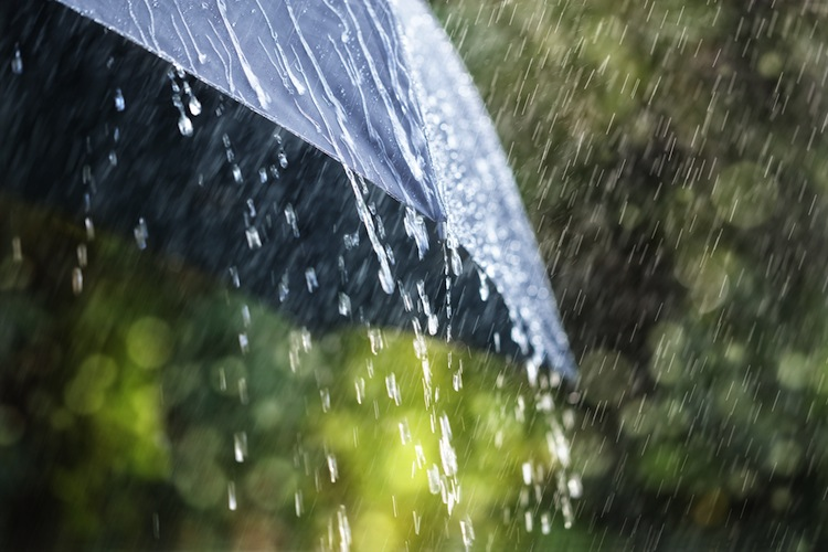 Shutterstock 323261750 in Keine Rekord-Schäden trotz Sommer-Regen in Deutschland