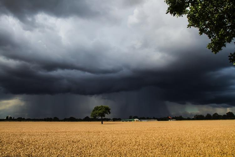 Starkregen verursacht fast eine Milliarde Euro Schaden
