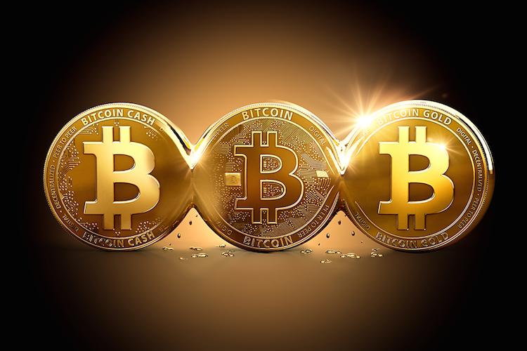Bitcoin-gold-cash-fork-spaltung-blockchain-krypto-shutterstock 734041420 in Bitcoin-Schreck: Deutsche haben nur wenig Vertrauen in Kryptowährungen