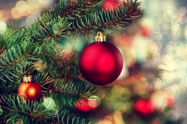 in vielen familien muss ein angeh riger an weihnachten. Black Bedroom Furniture Sets. Home Design Ideas