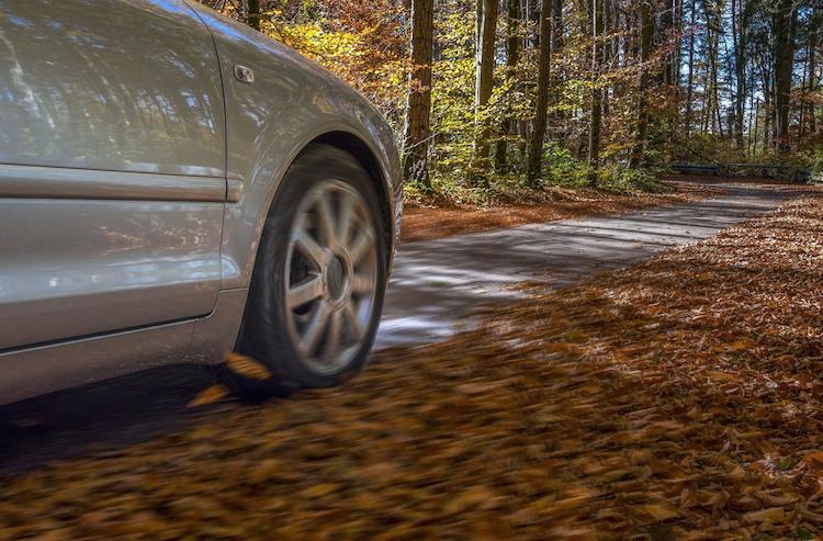 Laub in Herbst- und Winterzeit: Qual der Reifenwahl