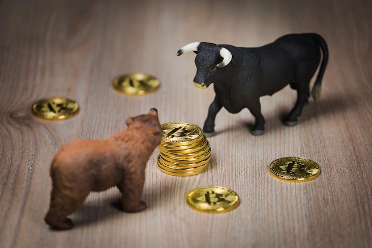 Bulle-baer-krypto-bitcoin-crypto-shutterstock 1259514745 in Diese acht Kryptowährungen werden untergehen