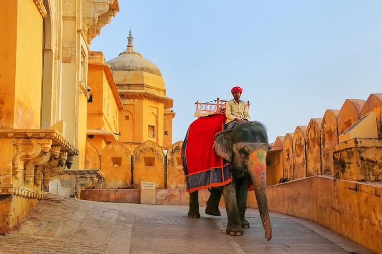 Shutterstock 1043610049 in Strafverfolger untersuchen Indien-Geschäft von Wirecard