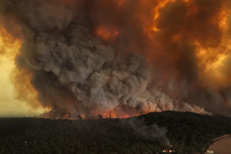 128105812 in Buschbrände: Politiker fordern Aussetzen des Dschungelcamps