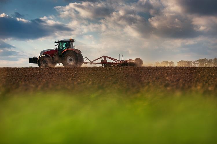 Shutterstock 414636535 in DMA macht fit für Land und Forst