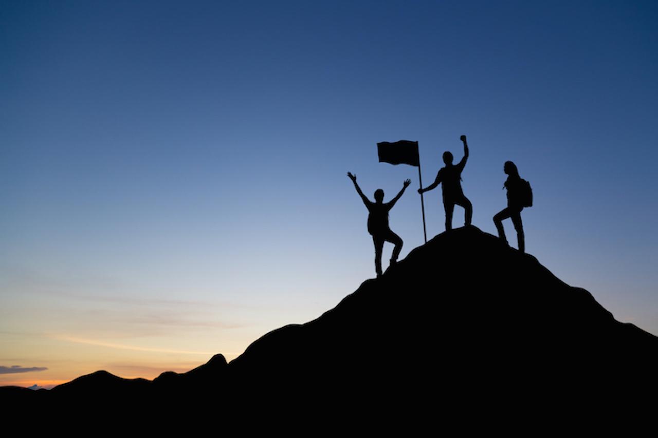 Shutterstock 782046457 in Cash. Hitliste der Maklerpools: Die Top Drei
