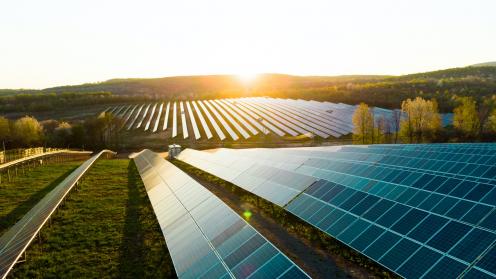 Sonnenaufgang über Solarparks