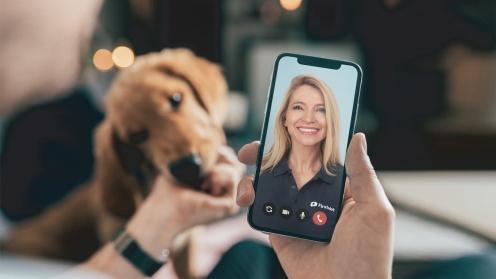 Person spricht mit Frau über Handy, Hund im Hintergrund
