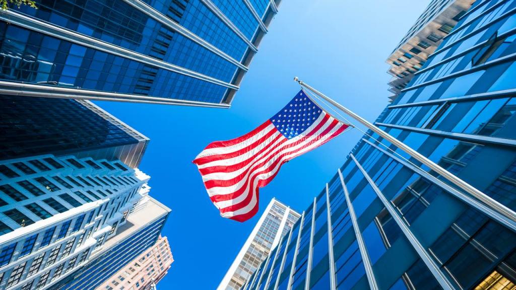 US-Flagge vor Hochhäusern als Symbol für TSO Investitionen