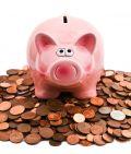 Biogas: Schweine sind die neuen Cash-Cows
