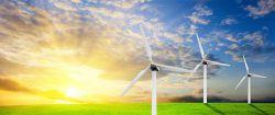 Greenvalue: Grüne Beteiligungen bleiben auf Wachstumskurs