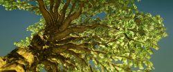 Nachhaltige Investments: Outperformer in der Finanzkrise