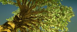 Nachhaltige Investments setzen Wachstumskurs fort