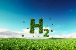 Niederlande planen größte grüne Wasserstofffabrik Europas